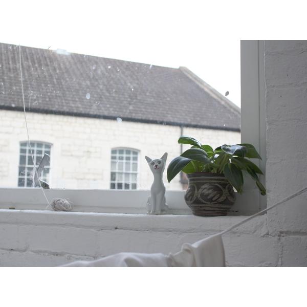 cat-studio